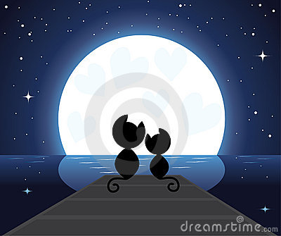 Two cats in love watching on the moon