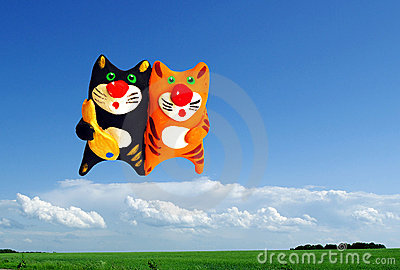 Two cats in the sky