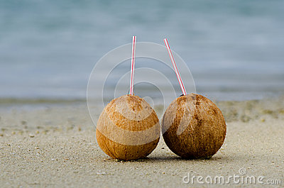 Two coconuts on sandy sea shore