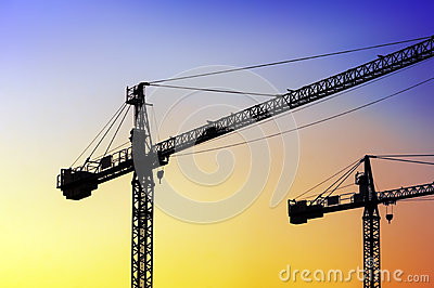 Two cranes at sunset