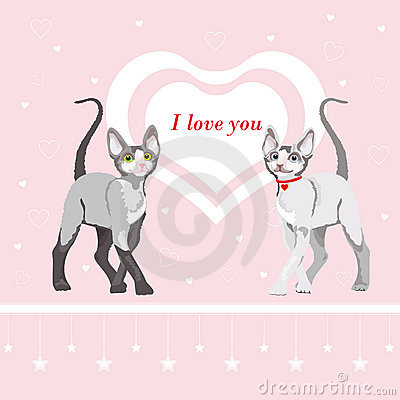 Two cute cat: Valentines day illustration