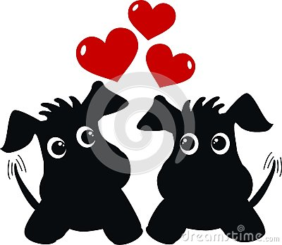 Two cute dogs in love