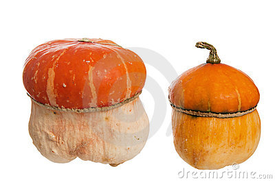 Two decorative pumpkins