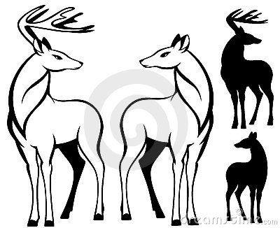 Two deers vector