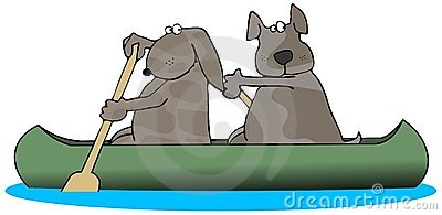 Two Dogs In A Canoe