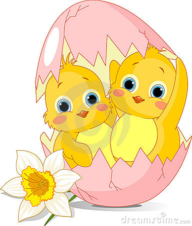 Two Easter chickens hatched from egg