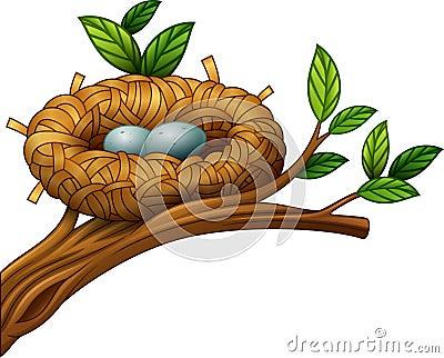 Two eggs in bird nest Vector Illustration