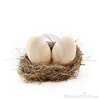 Two eggs inside the nest