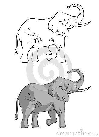 Two elephants on white background drawn by simple style. Vector Illustration
