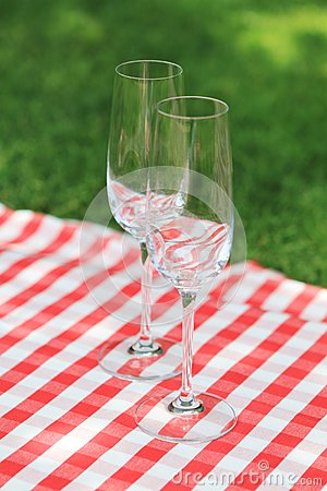 Two empty glasses  in the garden