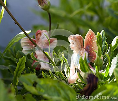 Two Fairy on vegetation