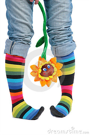 Two feet in multi-coloured socks and sunflower