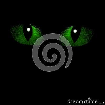 Two feline eyes