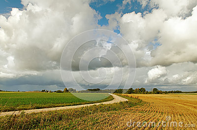Between Two Fields. Stock Image - Image: 26650531