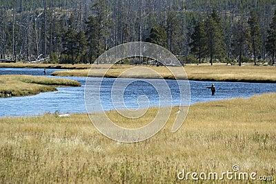 Two fly fisherman fishing