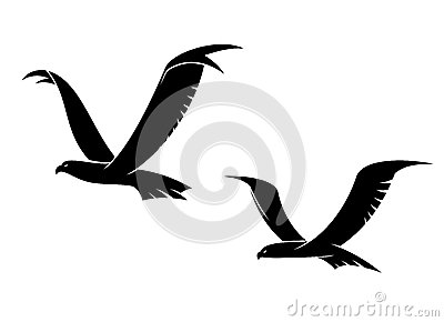 Two flying birds in silhouette