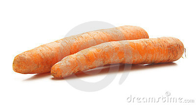 Two fresh carrots on a white background