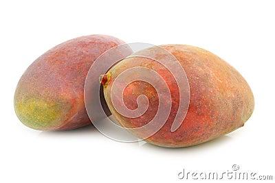 Two fresh mango fruits