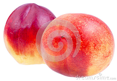 Two fresh Nectarines close up