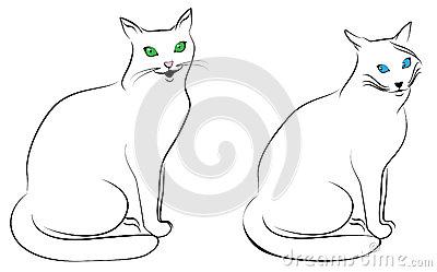 Two funny cats Stock Photo