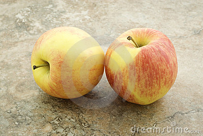 Two Gala Apples