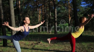 Will Forest Nude Yoga Sunset Photos