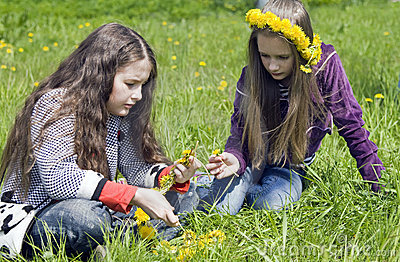 Two girls  spin garland from yellow dandelions