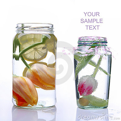 Free Two Glass Banks With Spring Tulips Stock Image - 14300781