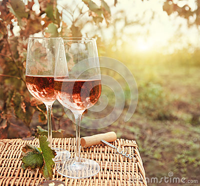 Free Two Glasses Of The Rose Wine In Autumn Vineyard Stock Photography - 41444862