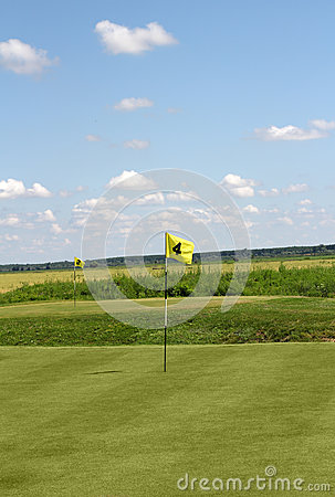 Two golf yellow flag