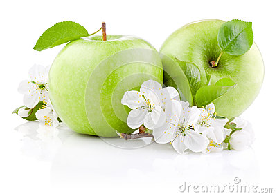 Two Green Apples with Leaf and Flowers
