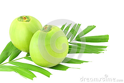 Two green coconuts and leaf
