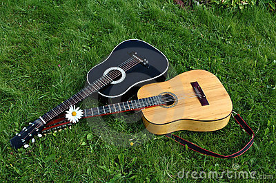 Two guitars on green lawn