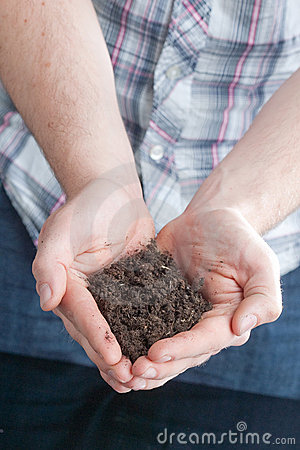 Two handfuls of soil