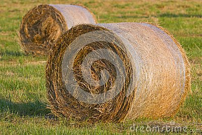 Two hay stack on the meadow