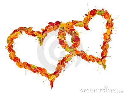 Two hearts of the autumn leaves