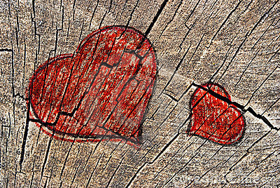 Two hearts on a cut tree