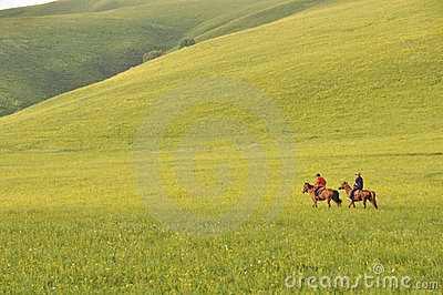 Two herdsmen on pasture Editorial Stock Image