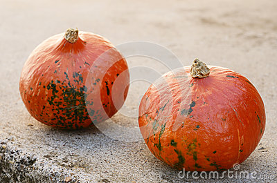 Two hokkaido pumpkins on concrete background