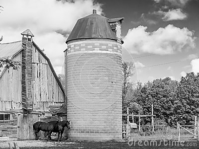 Two Horses barn and silo