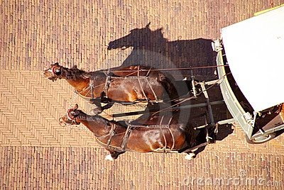 Two horses carriage