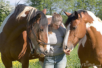 Two horses and a girl