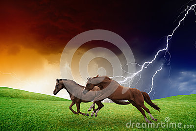 Two horses, lightning storm