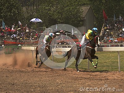 Two Horses at Race Editorial Photography