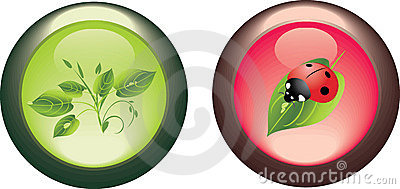 Two isolated buttons. Spring concept