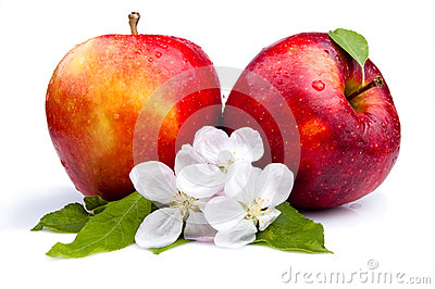 Two Juicy Red Apple and flowers