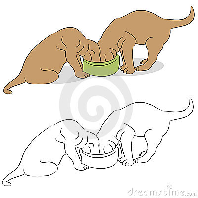 Puppies Sharing Food