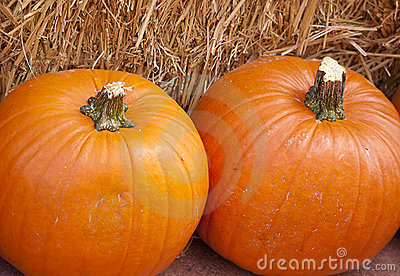 Two large pumpkins on straw