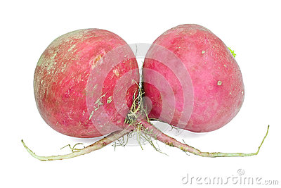 Two large radishes