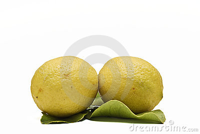 Two lemons on its leaves.